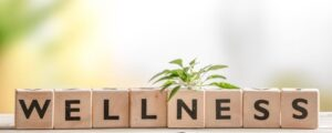 Disaster Relief - How to Maintain a Lifestyle of Wellness